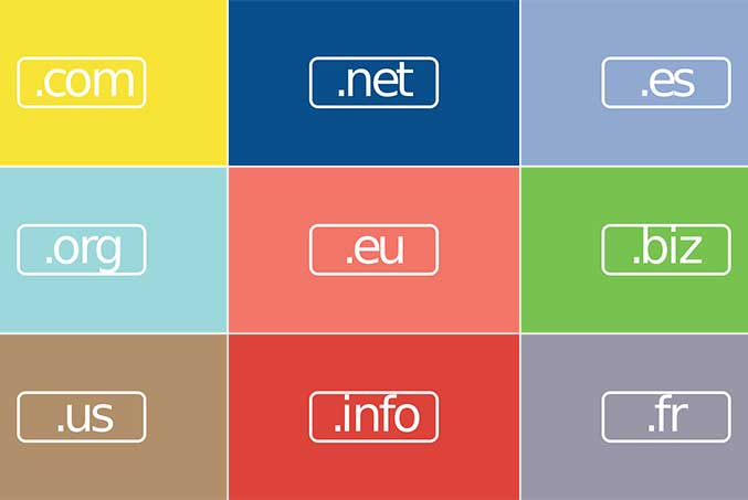 Domain Name and Operation