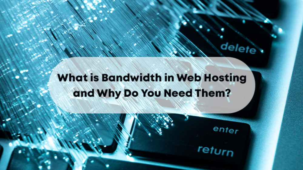 What is Bandwidth in Web Hosting and Why Do You Need Them?