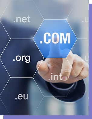 Grab Our Domain Service Perks