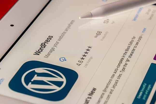 Web hosting for WordPress sites